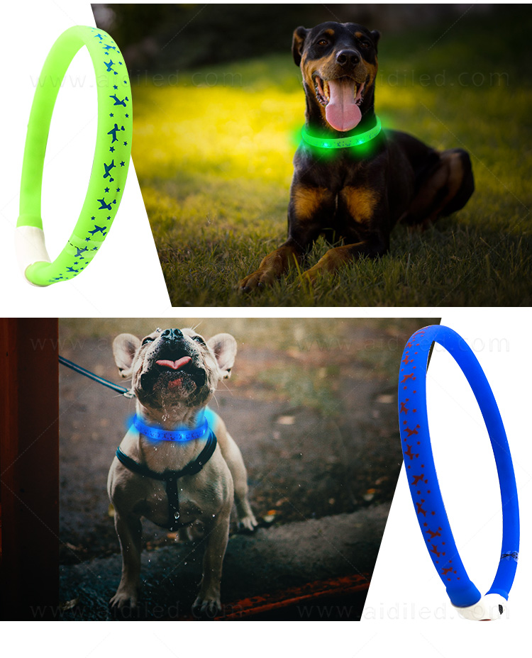 nylon best glow in the dark dog collar design for park-13