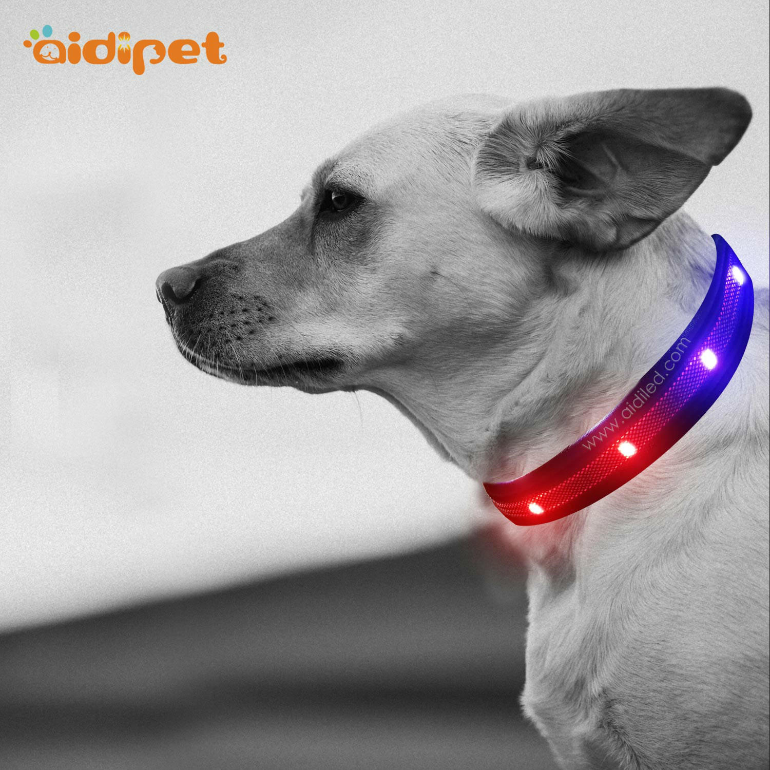 AIDI-C27 Colorful Dog Collar Led Flashing Light
