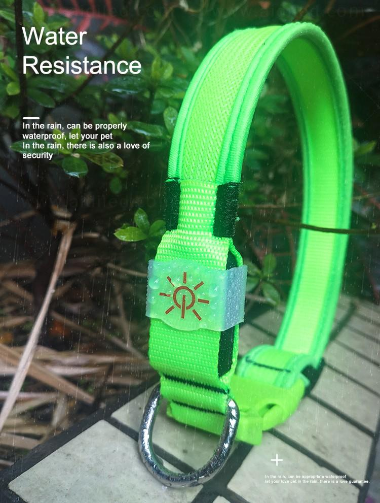 AIDI remote led dog collars design for outdoors