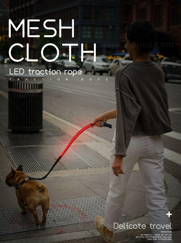AIDI best led dog leash inquire now for outdoors