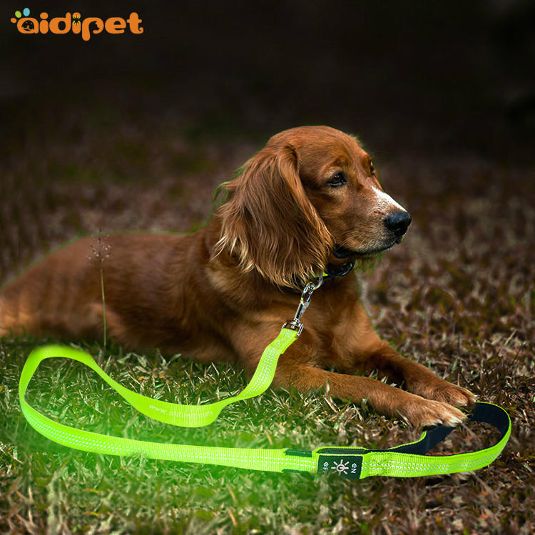 AIDI-L5 Reflective Stitching Led Dog Leash