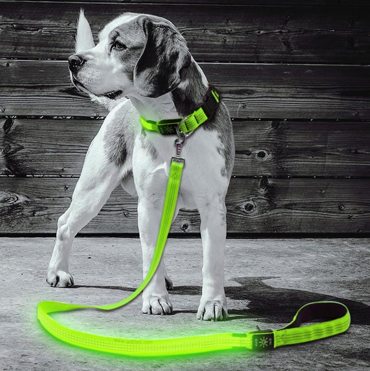 AIDI flat led light dog leash factory for park-1