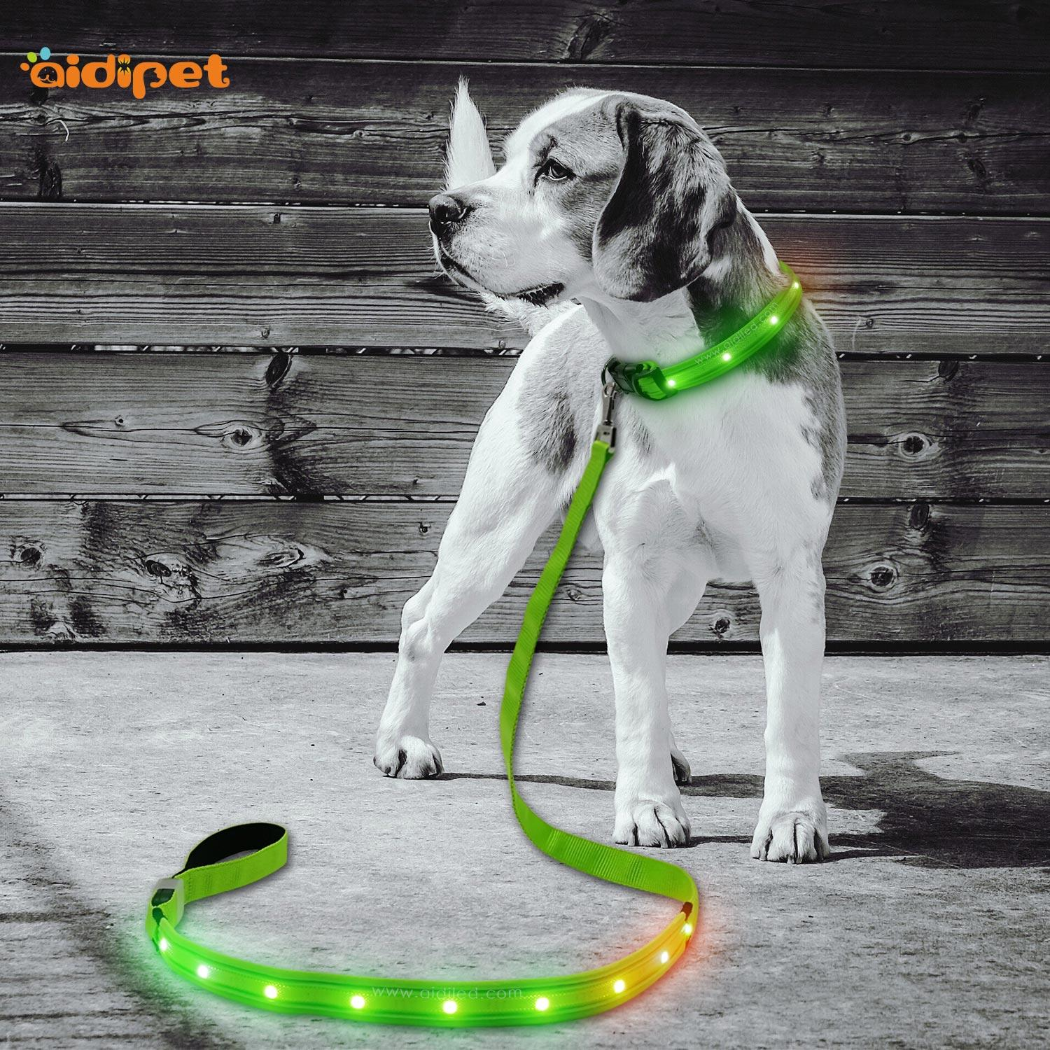 Rainbow Light  Nylon Rechargeable Led Dog Leash AIDI-L2
