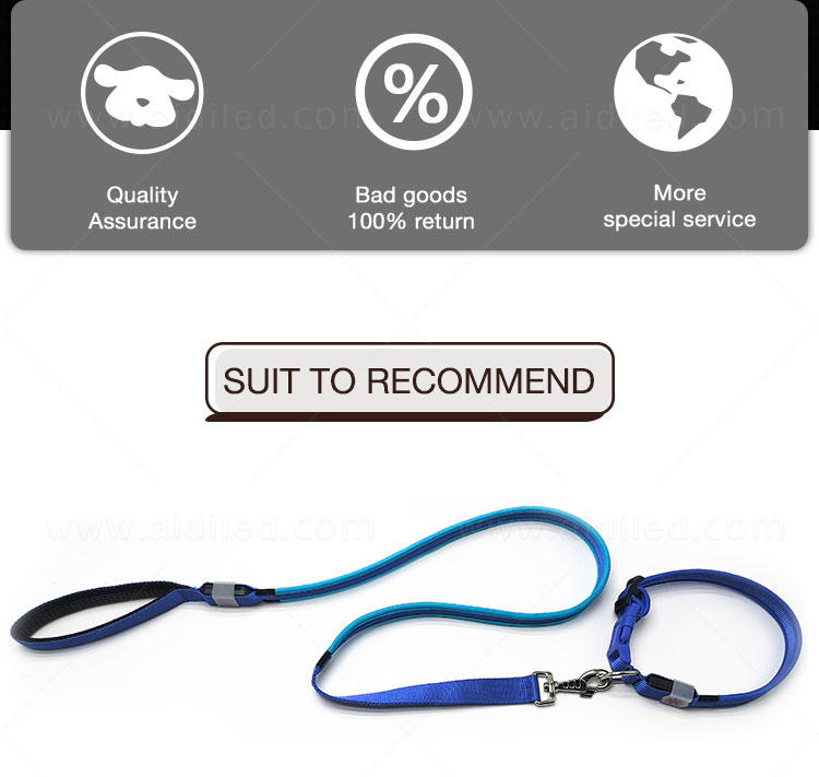 AIDI light up dog collar and leash design for pet