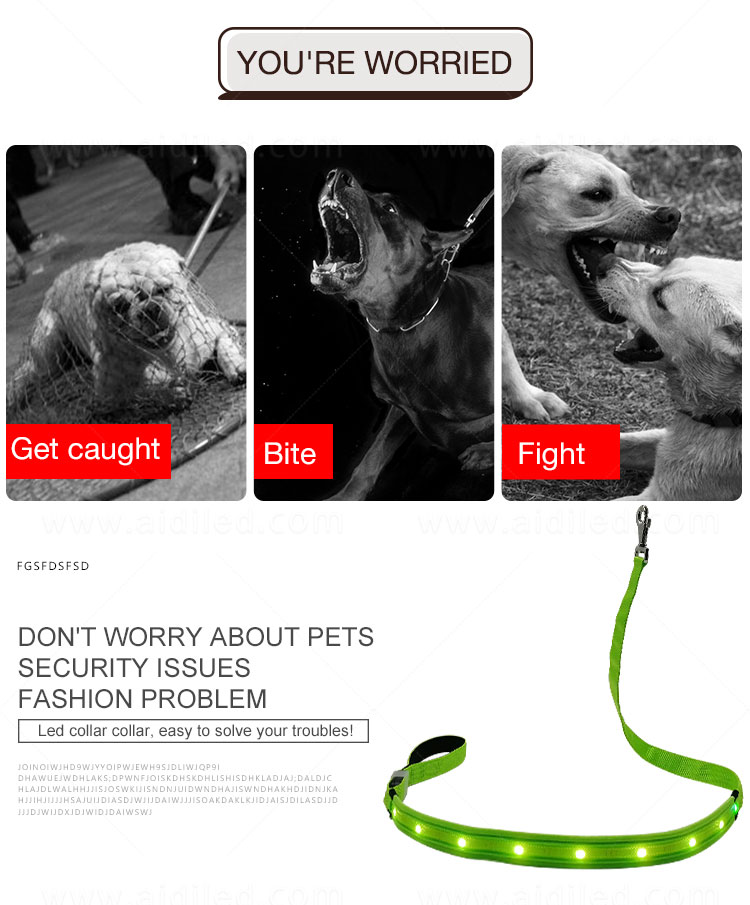 AIDI light up dog collar and leash design for pet-2