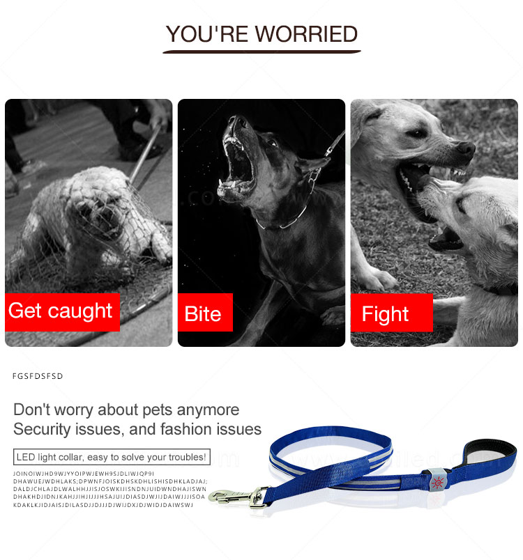 AIDI light up dog leash factory for pet-2