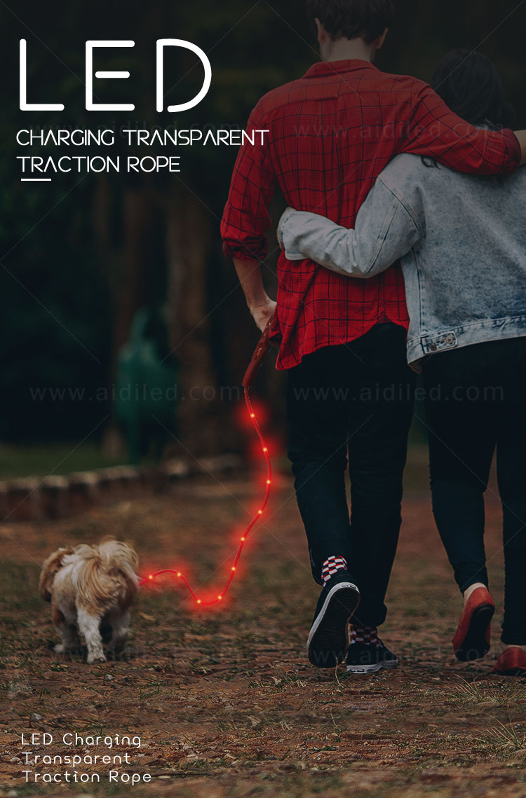 AIDI fishnet lighted dog leash with good price for park-1