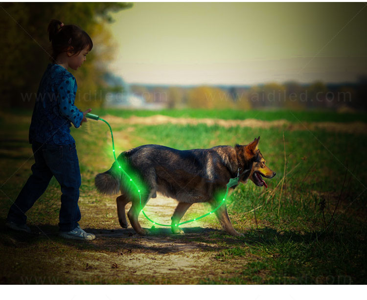 AIDI fishnet lighted dog leash with good price for park-15