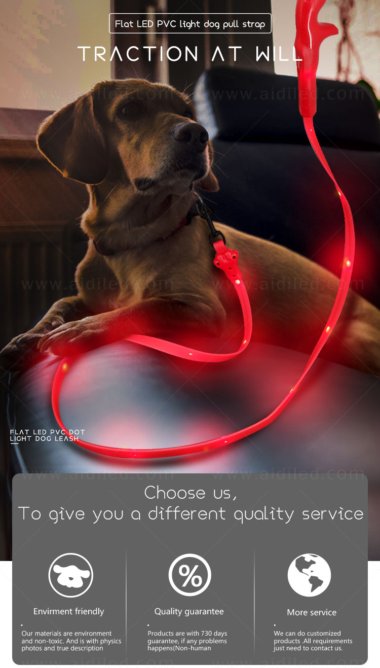 reflective lighted dog leash factory for pet-3