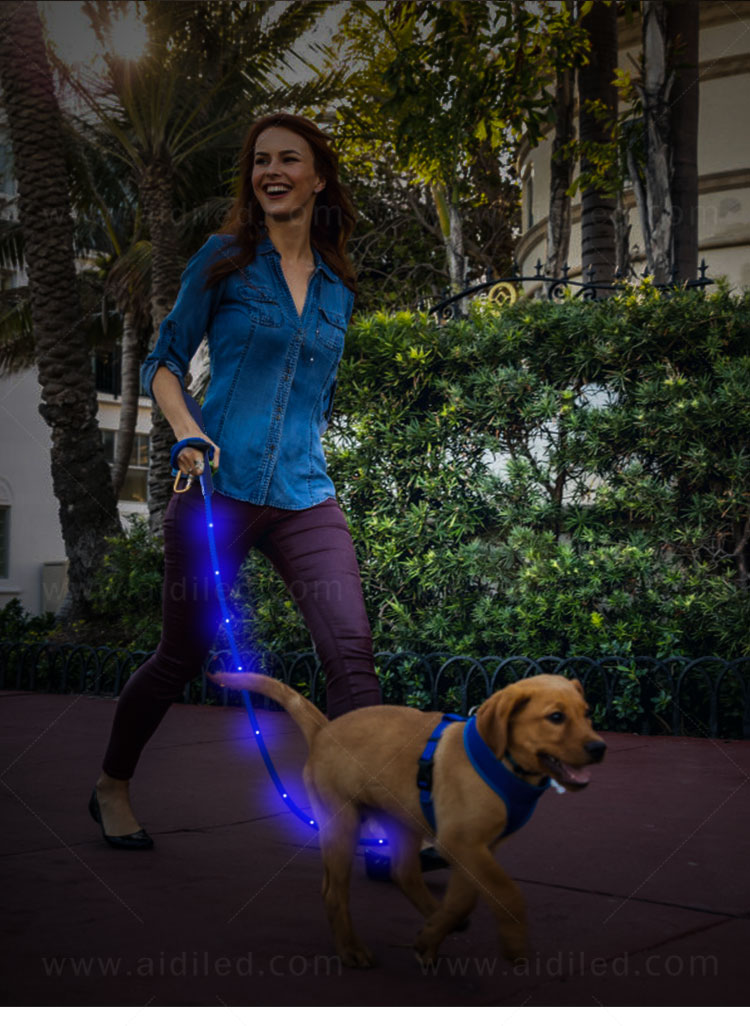 reflective lighted dog leash factory for pet-9