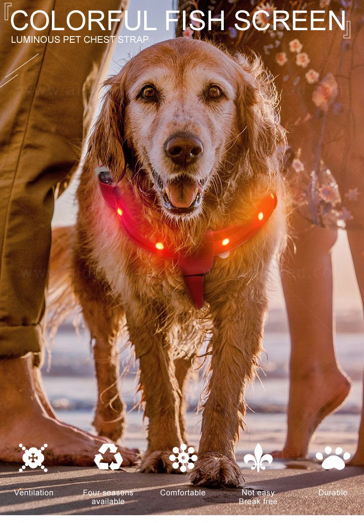 fishing net glowing dog harness from China for pet-3