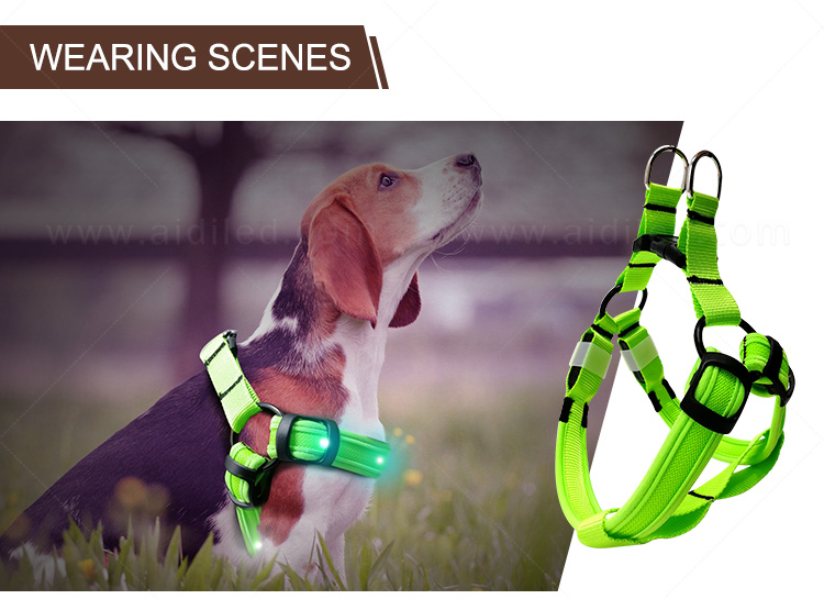 AIDI nylon glow in the dark dog harness customized for outdoors-12