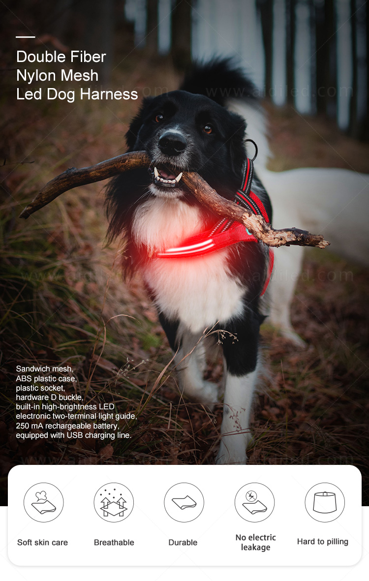 fishing net illuminated dog harness directly sale for outdoors-3