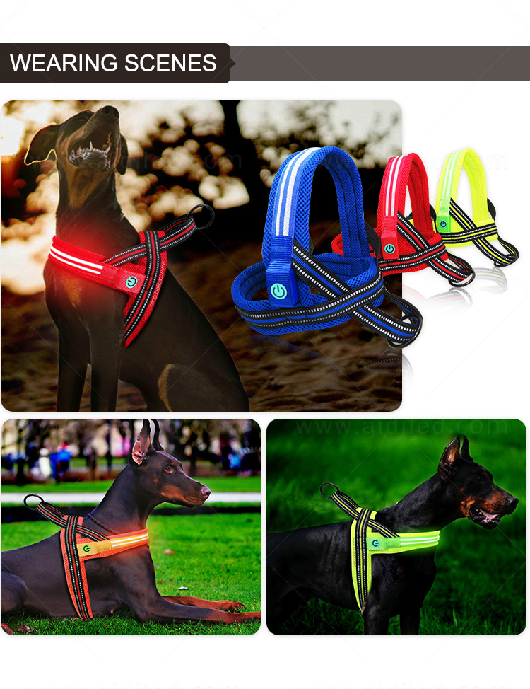 AIDI led dog harness manufacturer for street-11