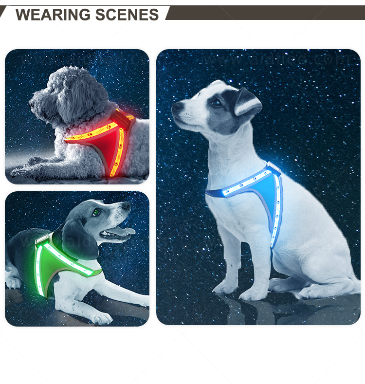 AIDI nylon light up dog harness manufacturer for pet-13