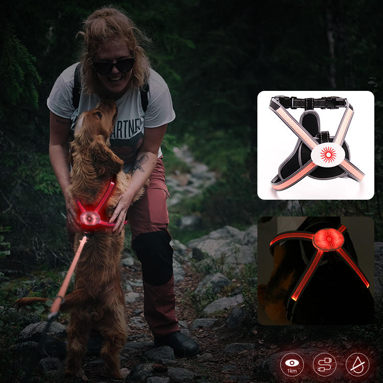 RGB Rainbow Color Led dog harness AIDI-H7