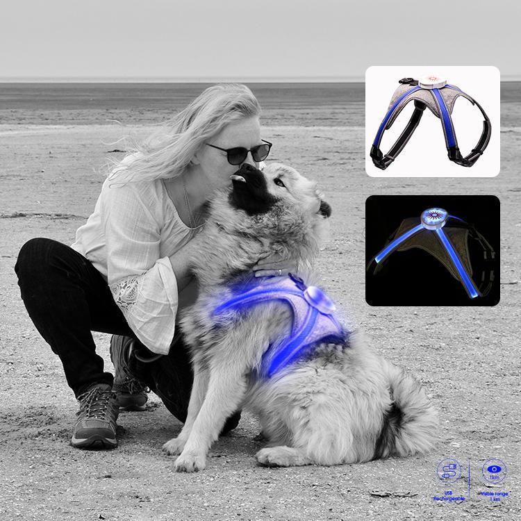 Hot sale multicolor RGB led dog harness h7p newest model