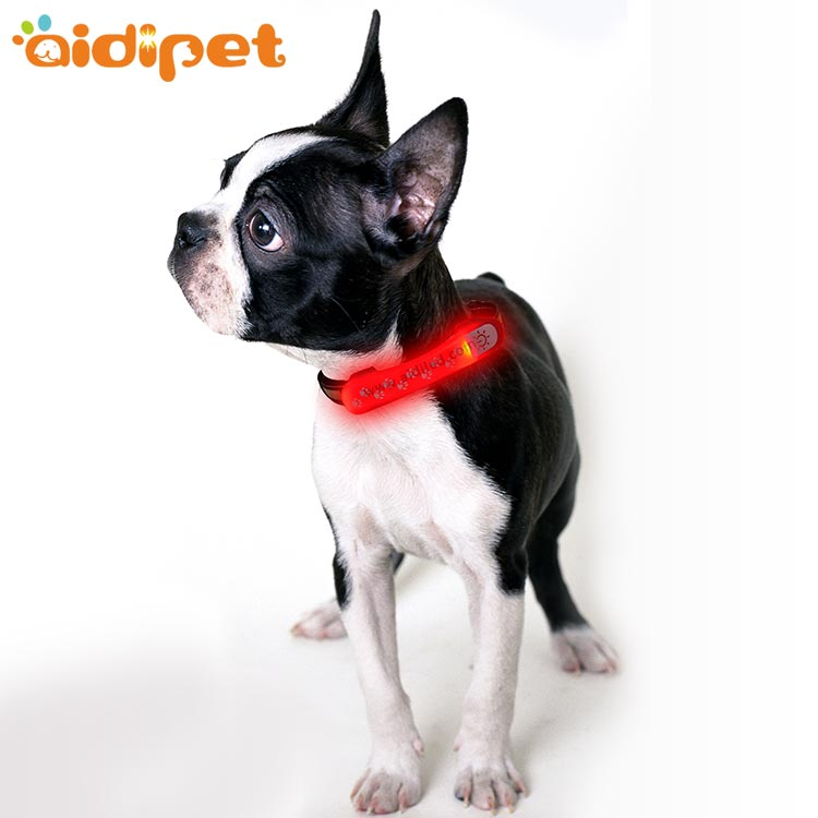 AIDI dog collars and accessories wholesale for outdoors-pet product manufacturers- wholesale dog pro-1