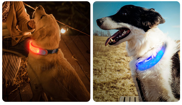 product-led light up silicone pet collar cover light AIDI-M2-AIDI-img-1