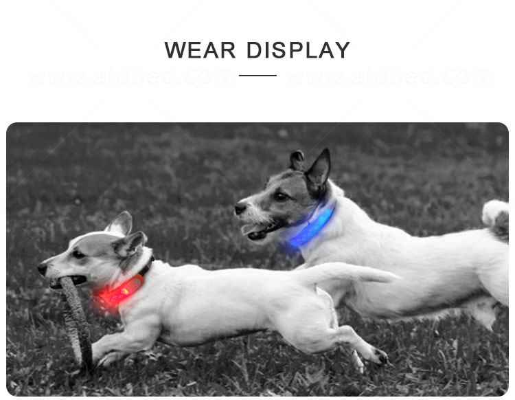 professional pet collar accessories personalized for park-10