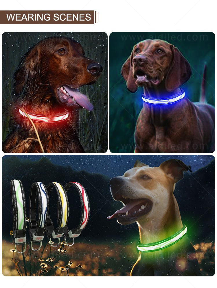 AIDI led dog collar waterproof inquire now for outdoors-13