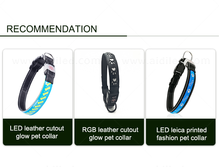 product-AIDI-C20 Wholesale Pet Dog Led Collar-AIDI-img