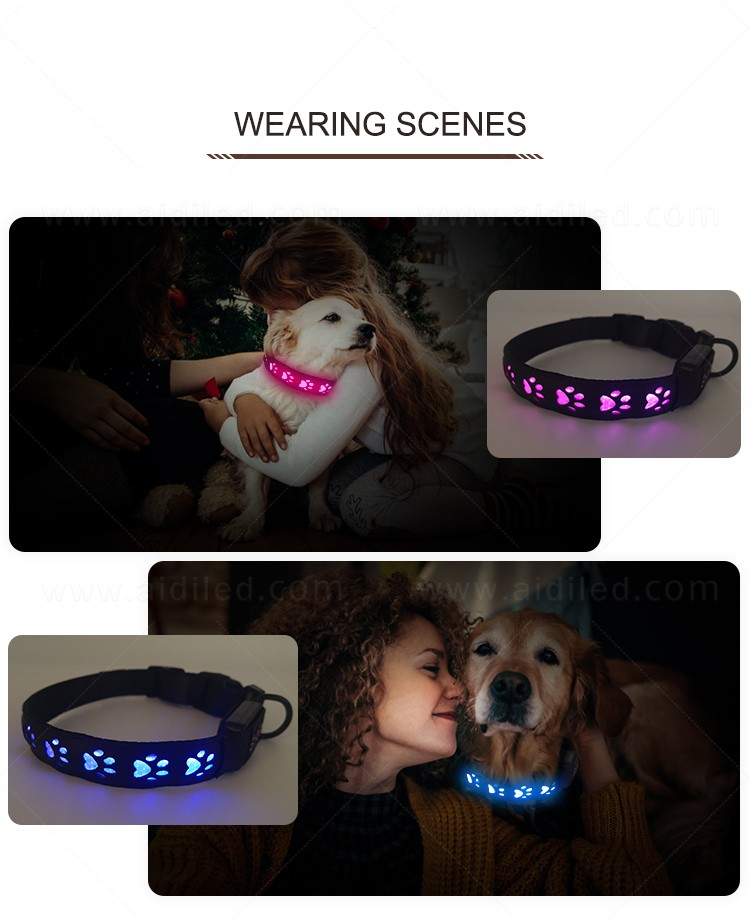 waterproof led pet collar light inquire now for walking-14