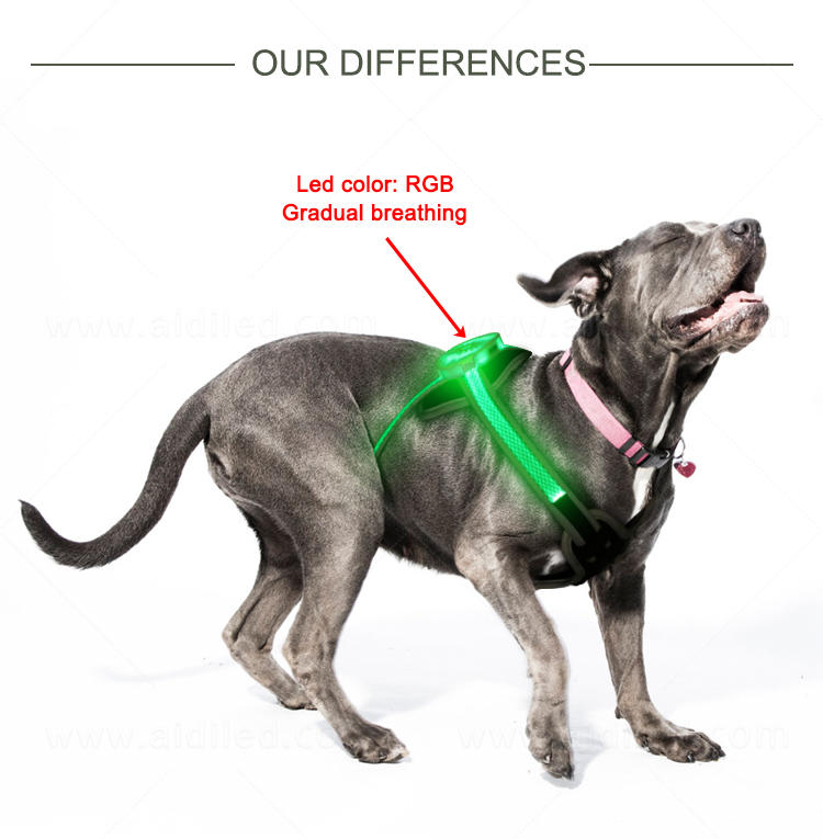 AIDI reflective light up dog harness customized for park