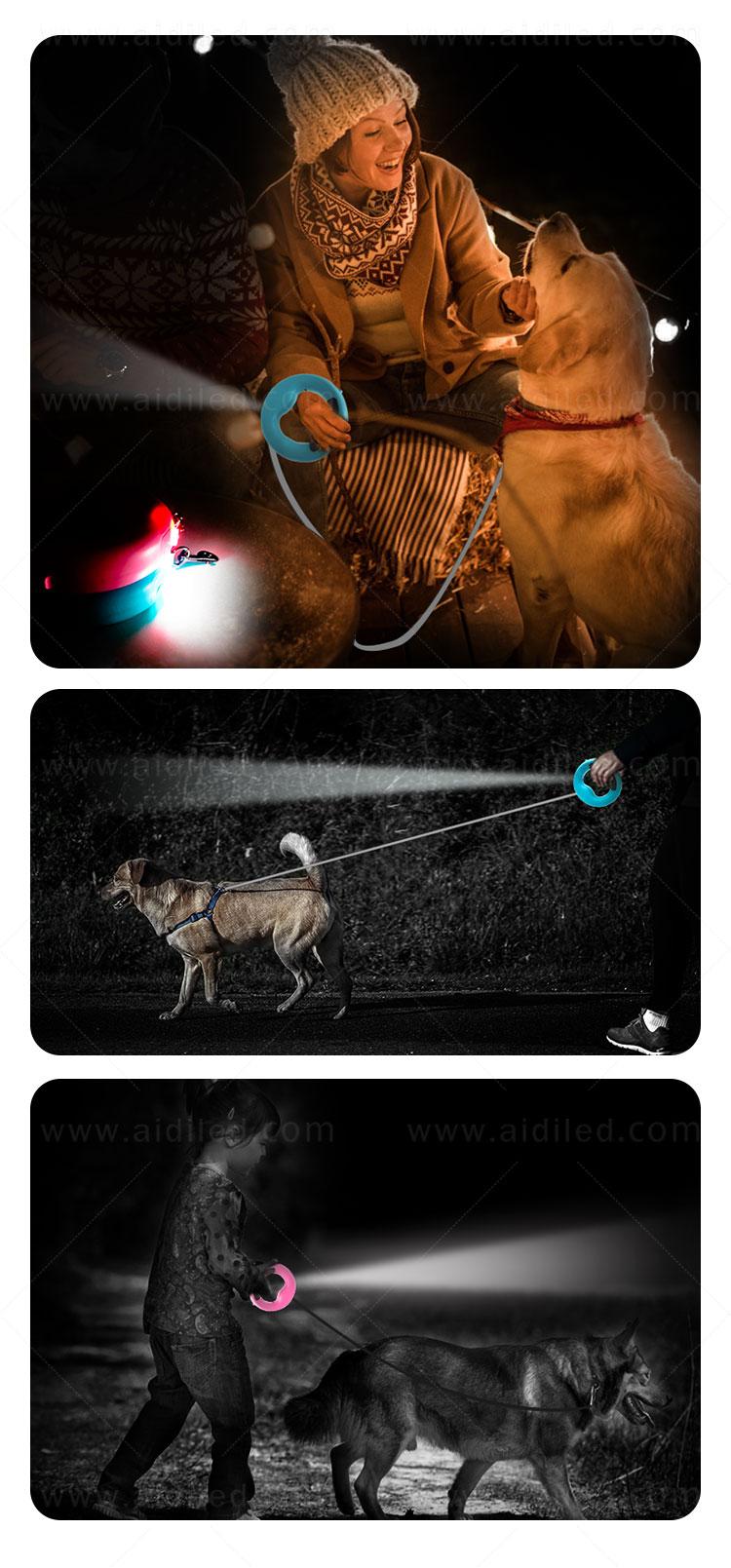 product-AIDI-led dog leash-img-1