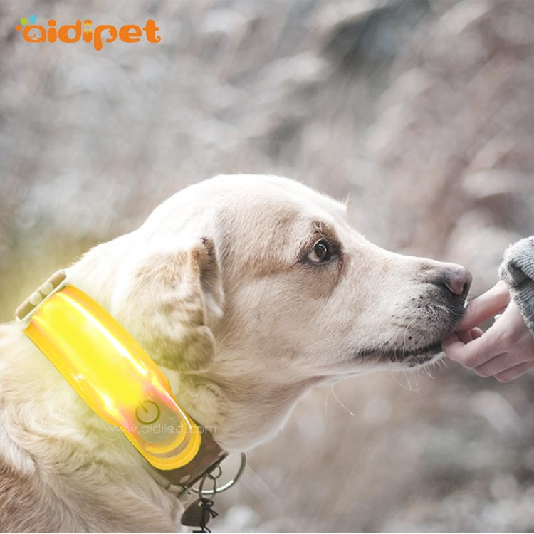 news-Things to Consider When Buying Your Pet Supplies-AIDI-img