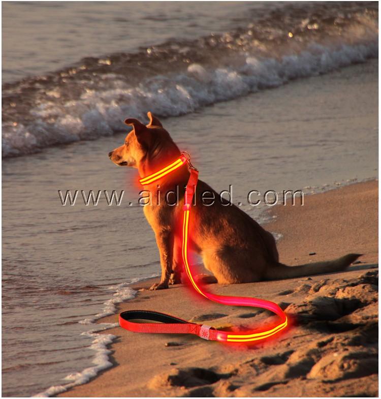 news-AIDI-AIDI LED Shining Dog Leash-img