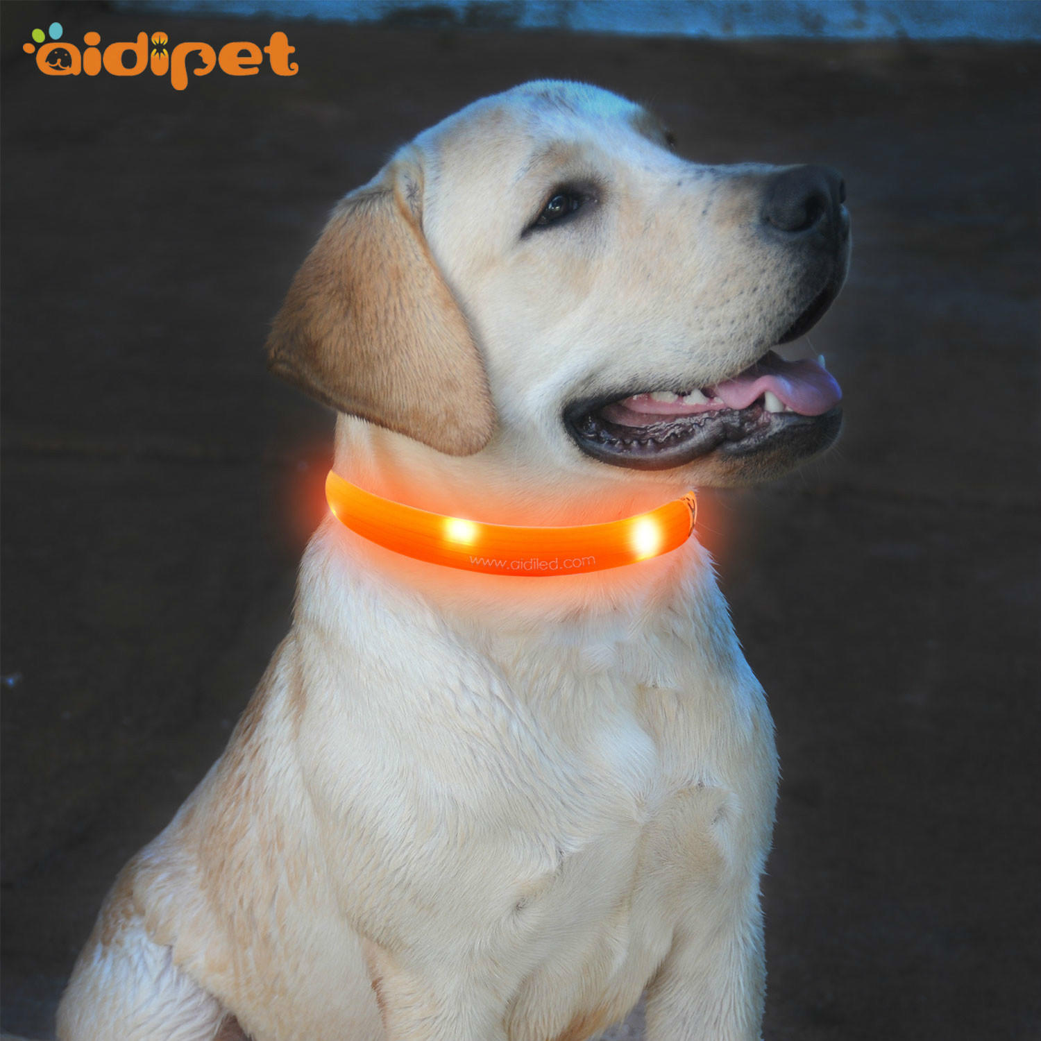 C5 LED Silicone Dog Collar