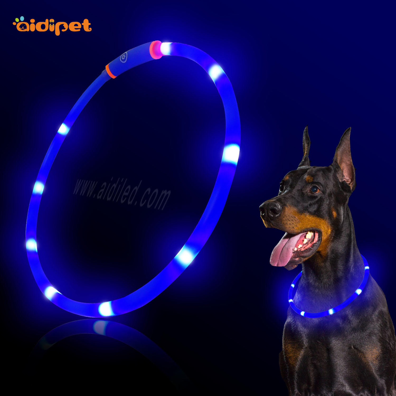 C3 Free Size Led dog collar