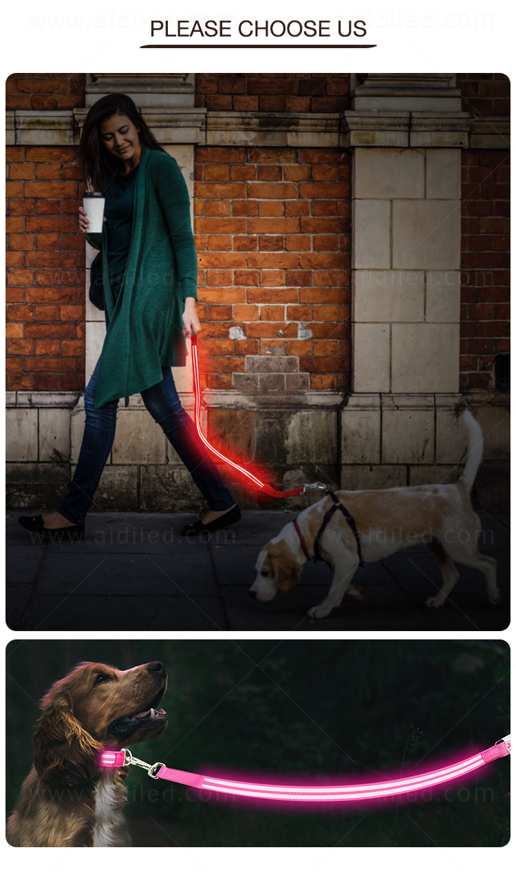 news-AIDI-The Benefits Of The LED Shining Dog Leash-img