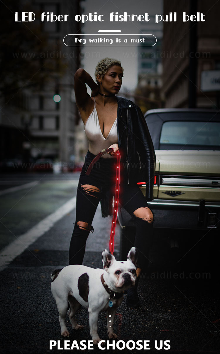 news-The Benefits Of The LED Shining Dog Leash-AIDI-img-1