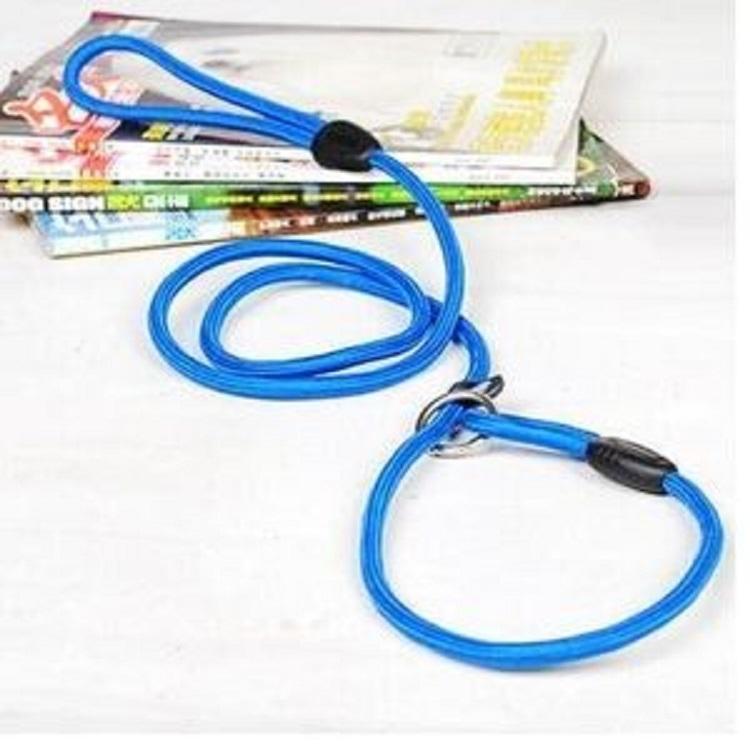 news-AIDI-Several types of dog leash-img