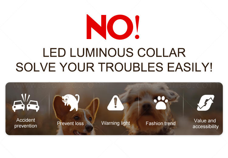 rechargeable best glow in the dark dog collar with good price for pet-3