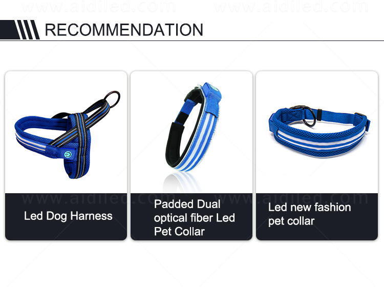AIDI double glowing dog collar from China for outdoors-1