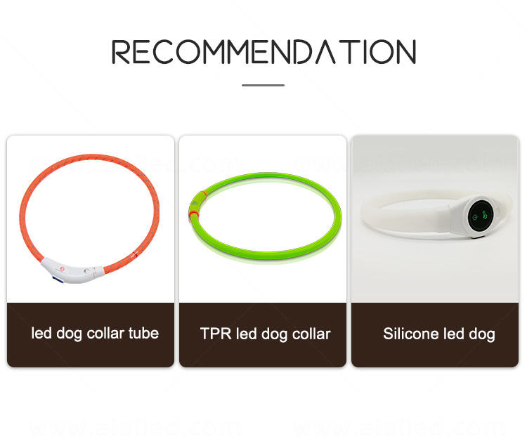 AIDI remote night time dog collars design for walking-1