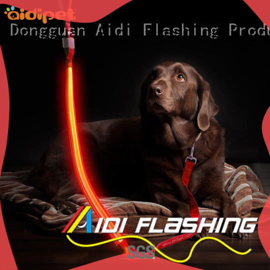 rechargeable dog leash with flashlight factory for walking