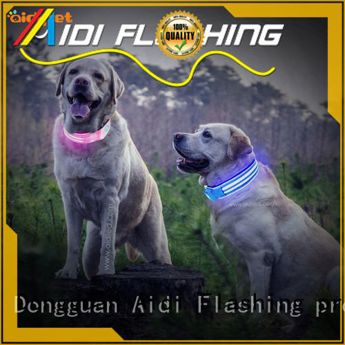 filament flashing dog collar inquire now for park