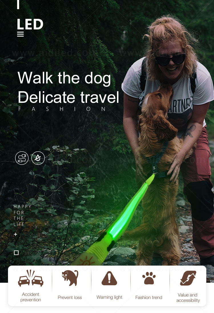 AIDI illuminated glow in the dark dog leash with good price for pet-2