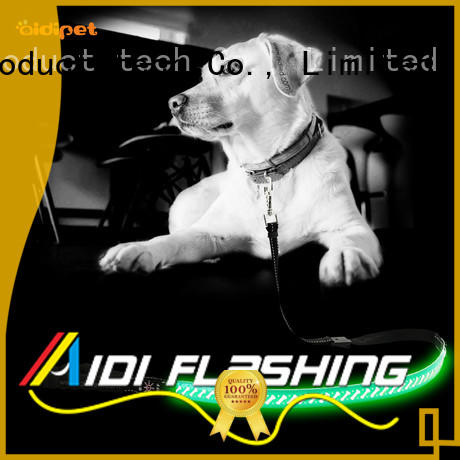 AIDI dog leash with flashlight design for park