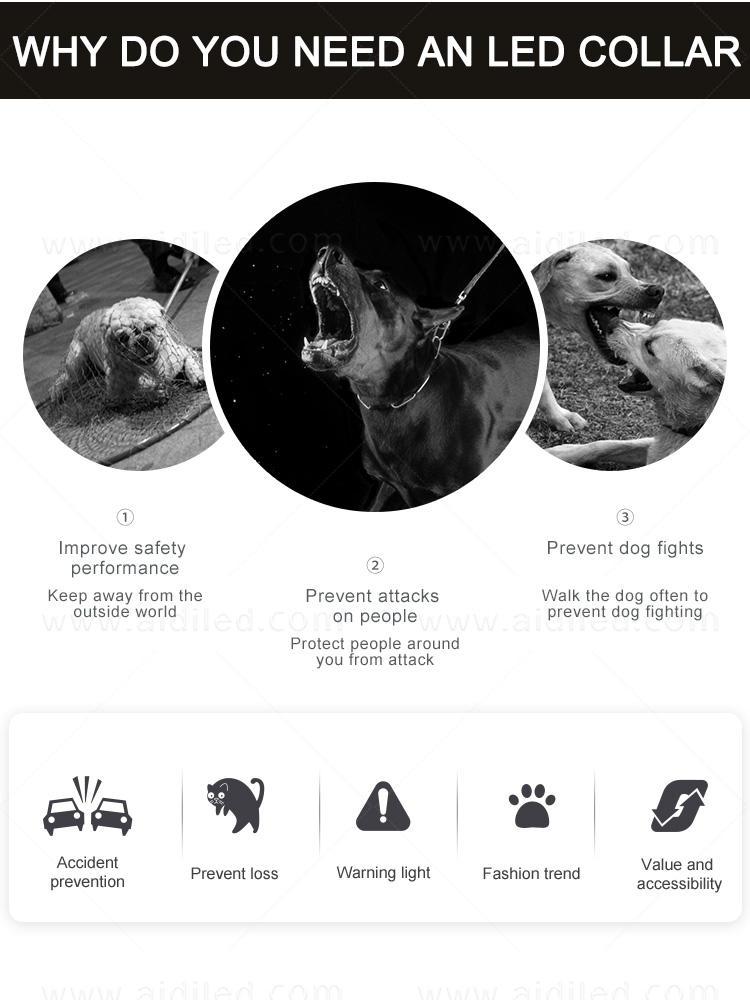 AIDI filament lightning dog collar design for outdoors-2