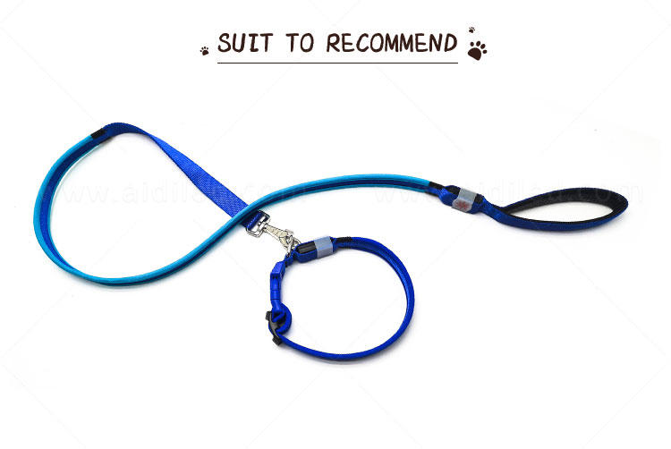 AIDI illuminated glow in the dark dog leash with good price for pet-1
