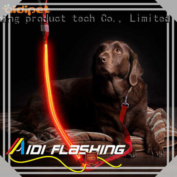 dog leash with flashlight with good price for outdoors