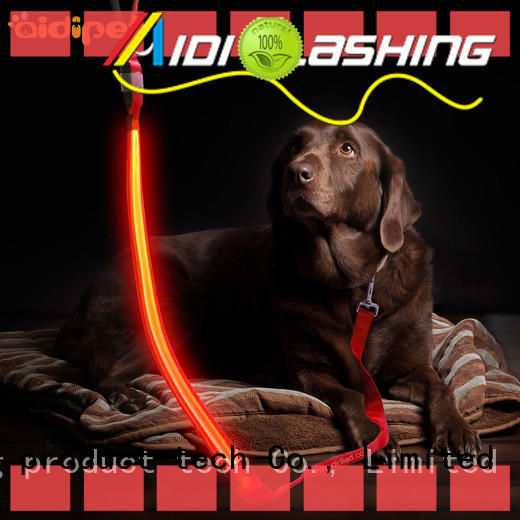 AIDI best led dog leash inquire now for park