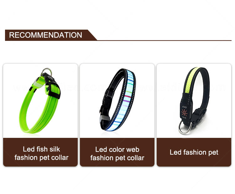 AIDI remote led dog collars design for outdoors-1