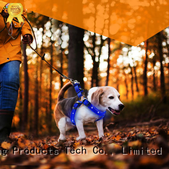 AIDI soft glowing dog harness manufacturer for outdoors