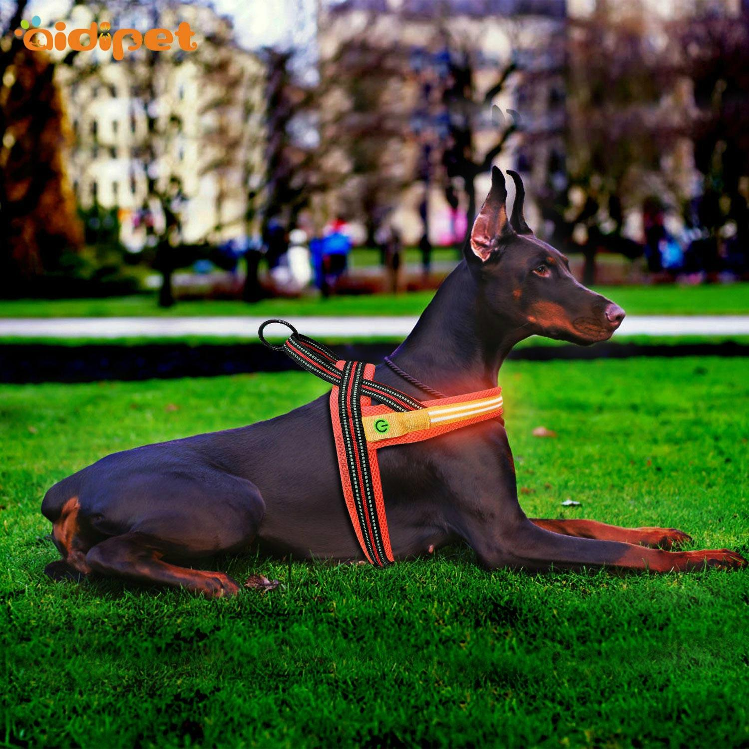AIDI-Find Illuminated Dog Harness Wholesale Dog Harness Vest-1